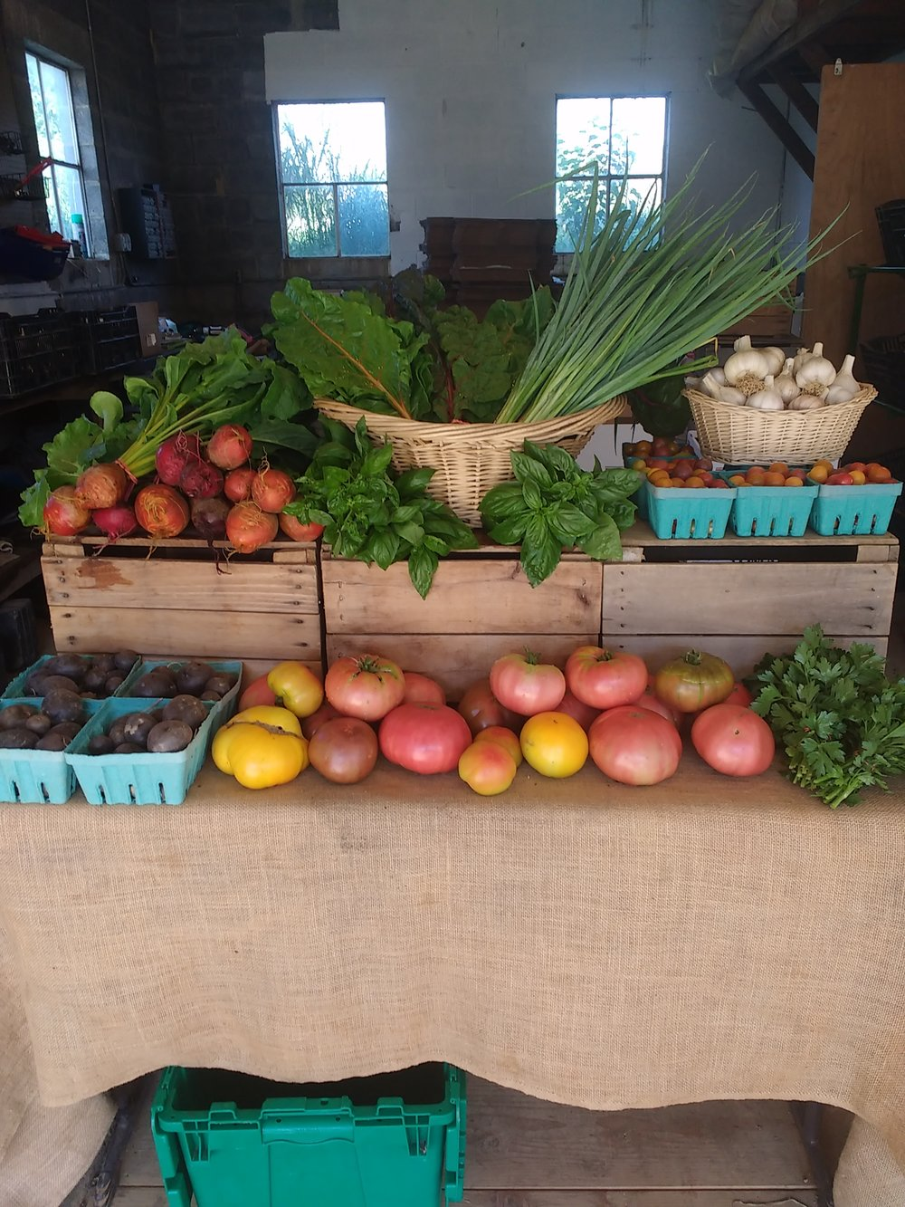 summerfarmstand.jpg