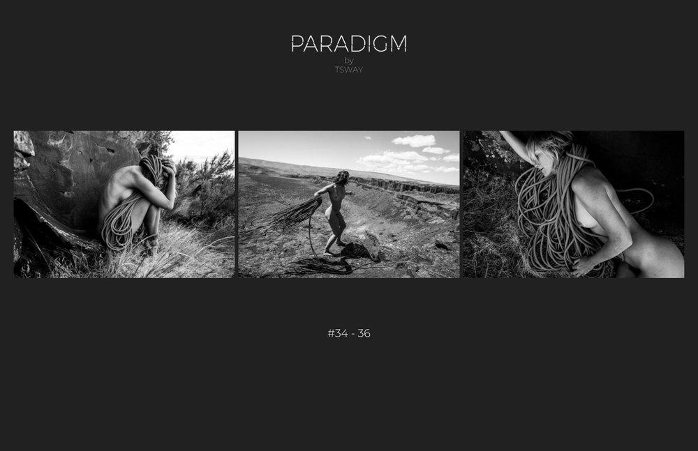 PARADIGM ebook 2018-15.jpg