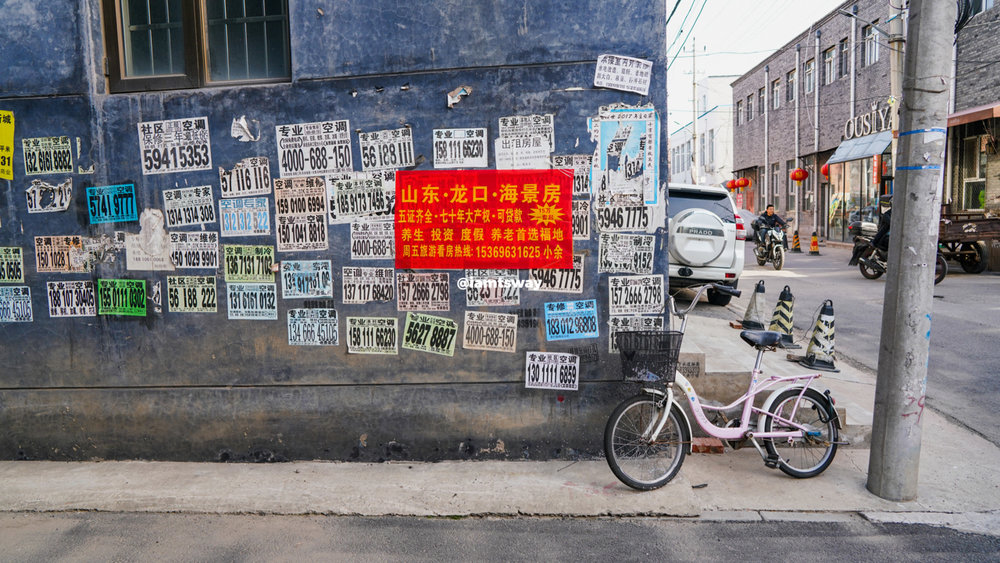 china (4 of 14).jpg