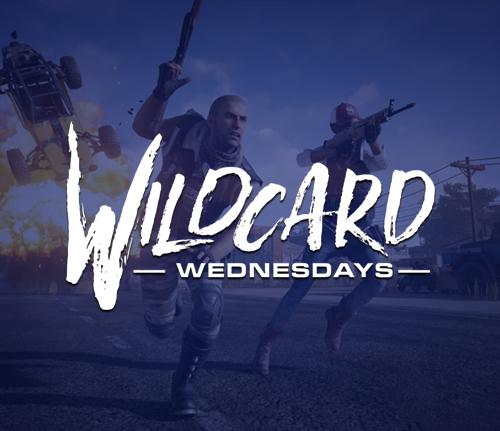 wildcard_show.jpg
