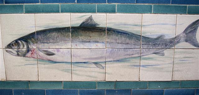 salmon tile.jpg