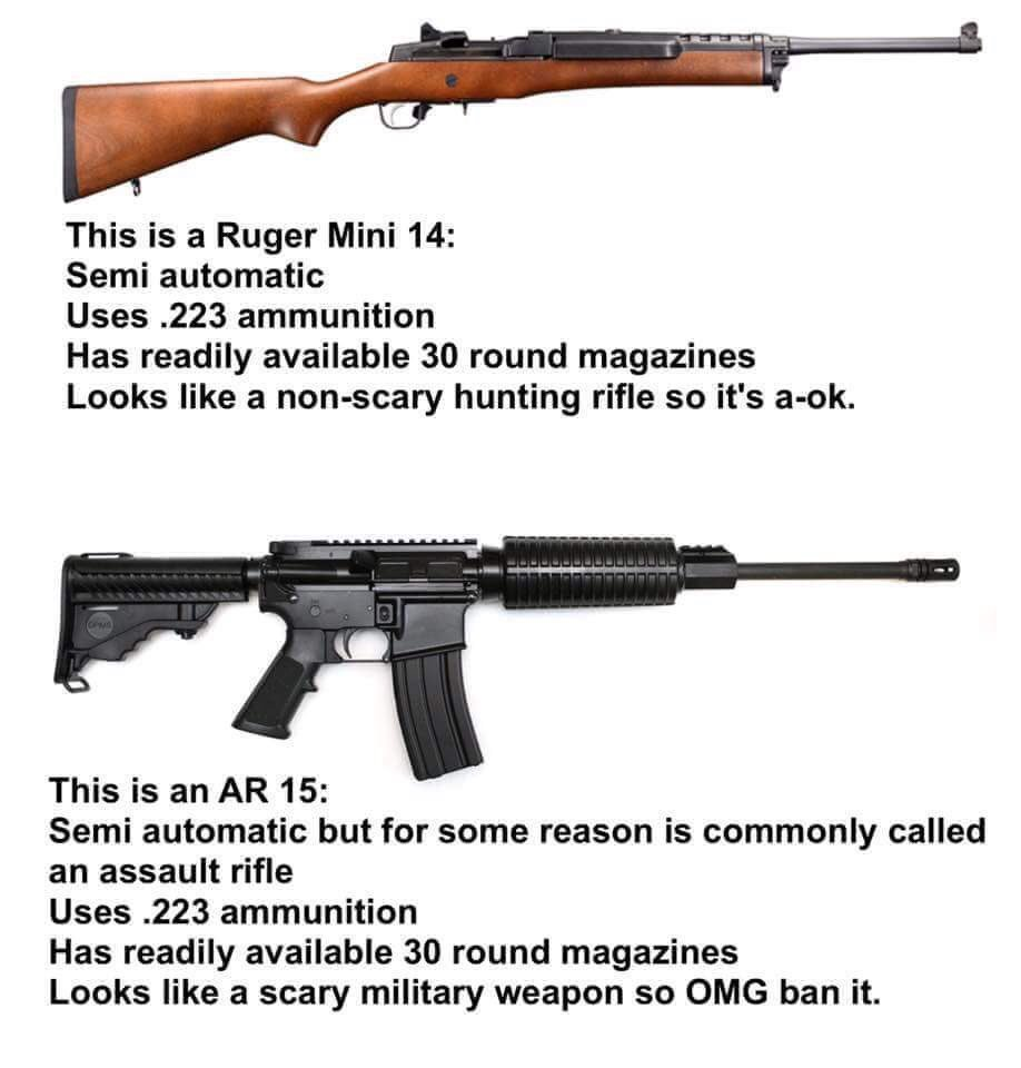 Both firearms are nearly identical in every way but looks. One is acceptable while another is demonized.