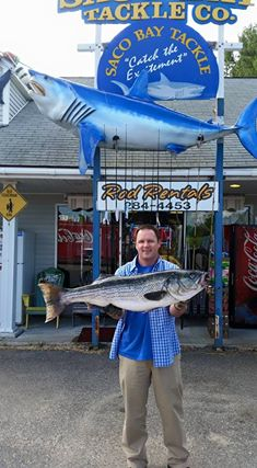 david Stephenson of Waterboro first 2015 40 plus 43 inch 32 pounds.jpg
