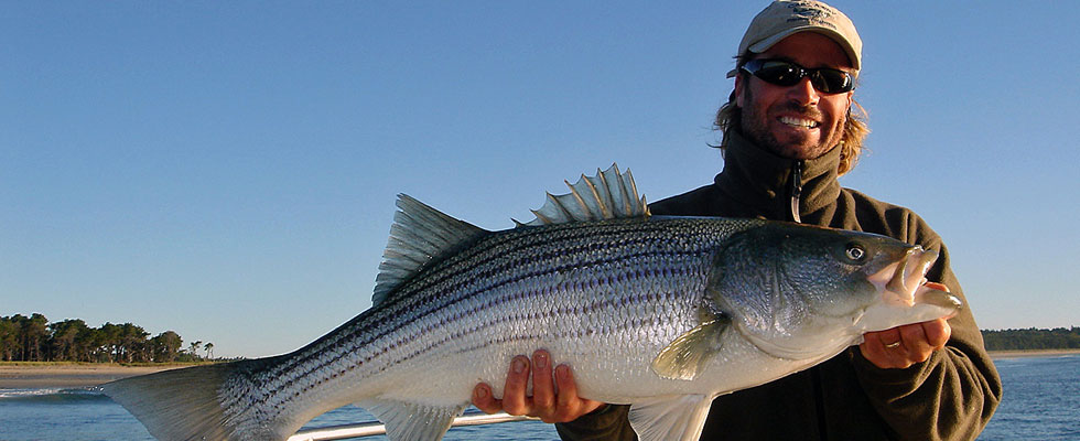 smiling-man-with-striper.jpg