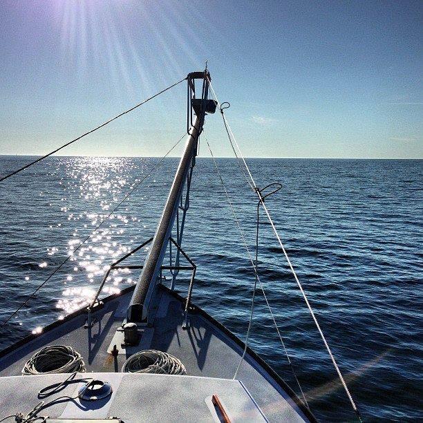 stick boat.jpg
