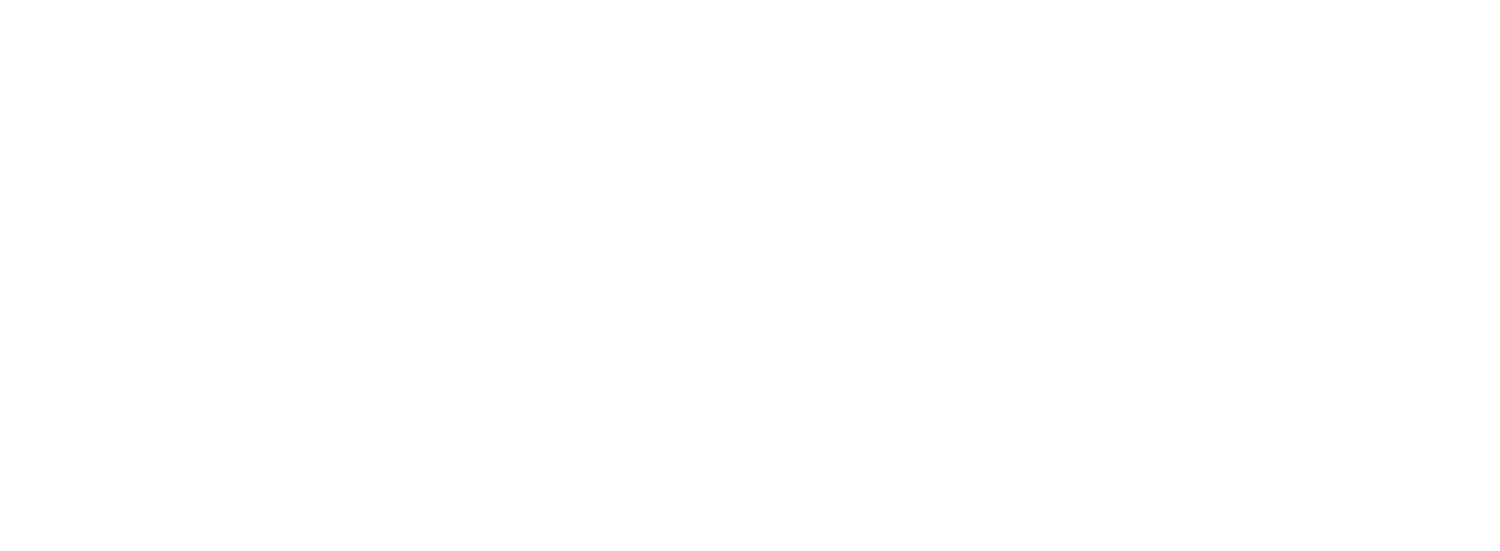 911 Buddy Check Project