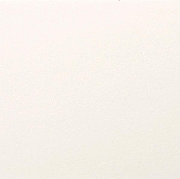 Paintable-White-Dove-REV-10_16_14-copy.jpg