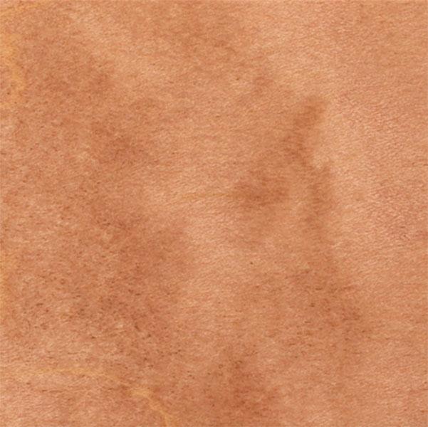 Maple-Fawn-copy.jpg