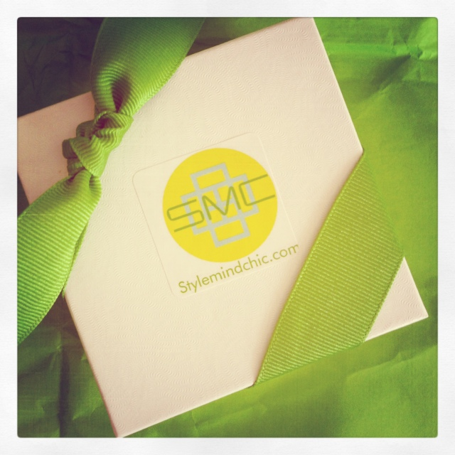Stylemindchic Boutique Signature Packaging