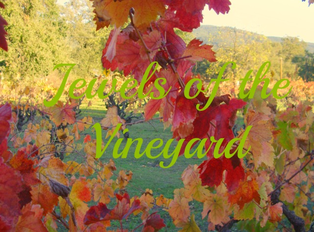 Jewels of the Vineyard