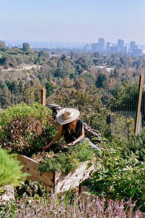 Gardening in LA Northern Cal Style and Stylemindchic Life