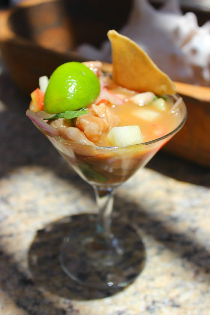 ceviche-zoetry-paraiso