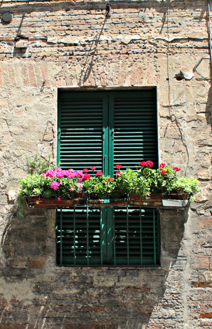 Window boxes Siena.png