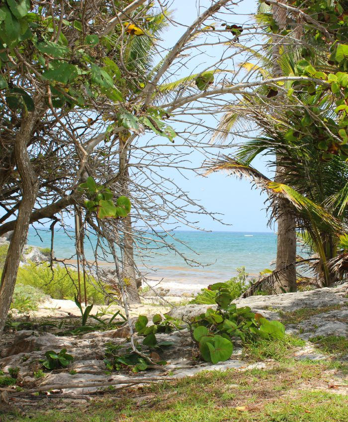 the sea view at Tulum.jpg