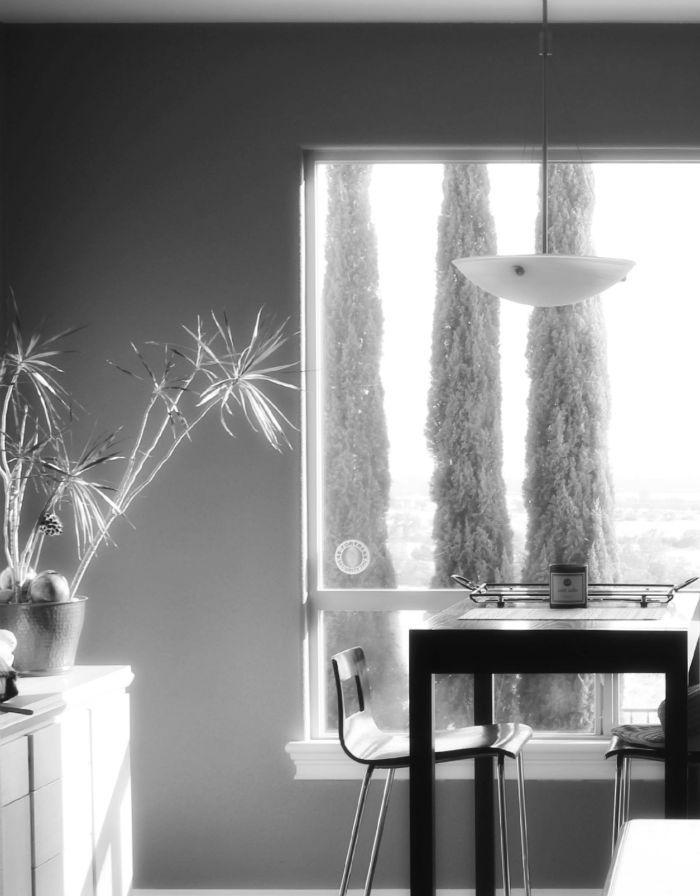 home-view-window