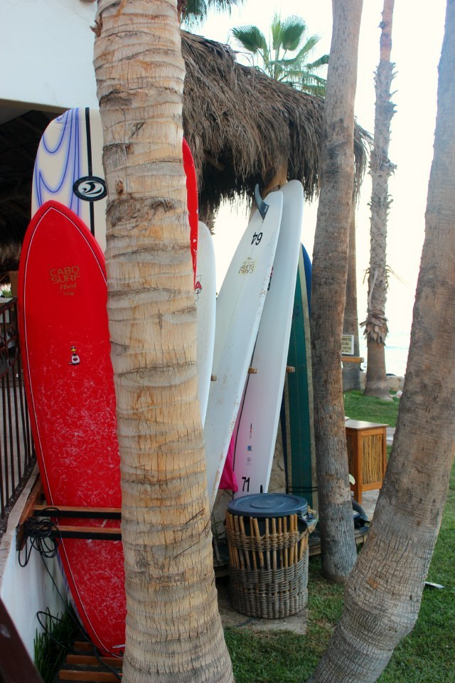 Stylemindchic Lifestyle Surfboards at Cabo Surf Hotel and Surf's Up at 7 Seas