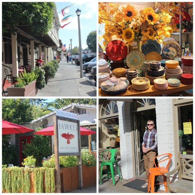 Sonoma Square Collage