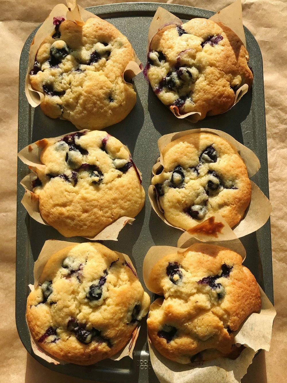 Blueberry Muffins2.JPG