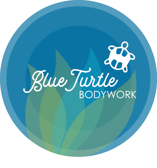 Blue Turtle Bodywork
