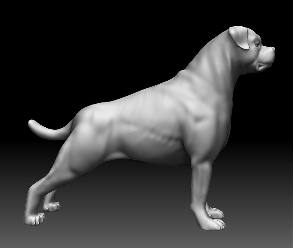 "Rottweiler sculpt for inanimate lab dogs in ""Contagion"""