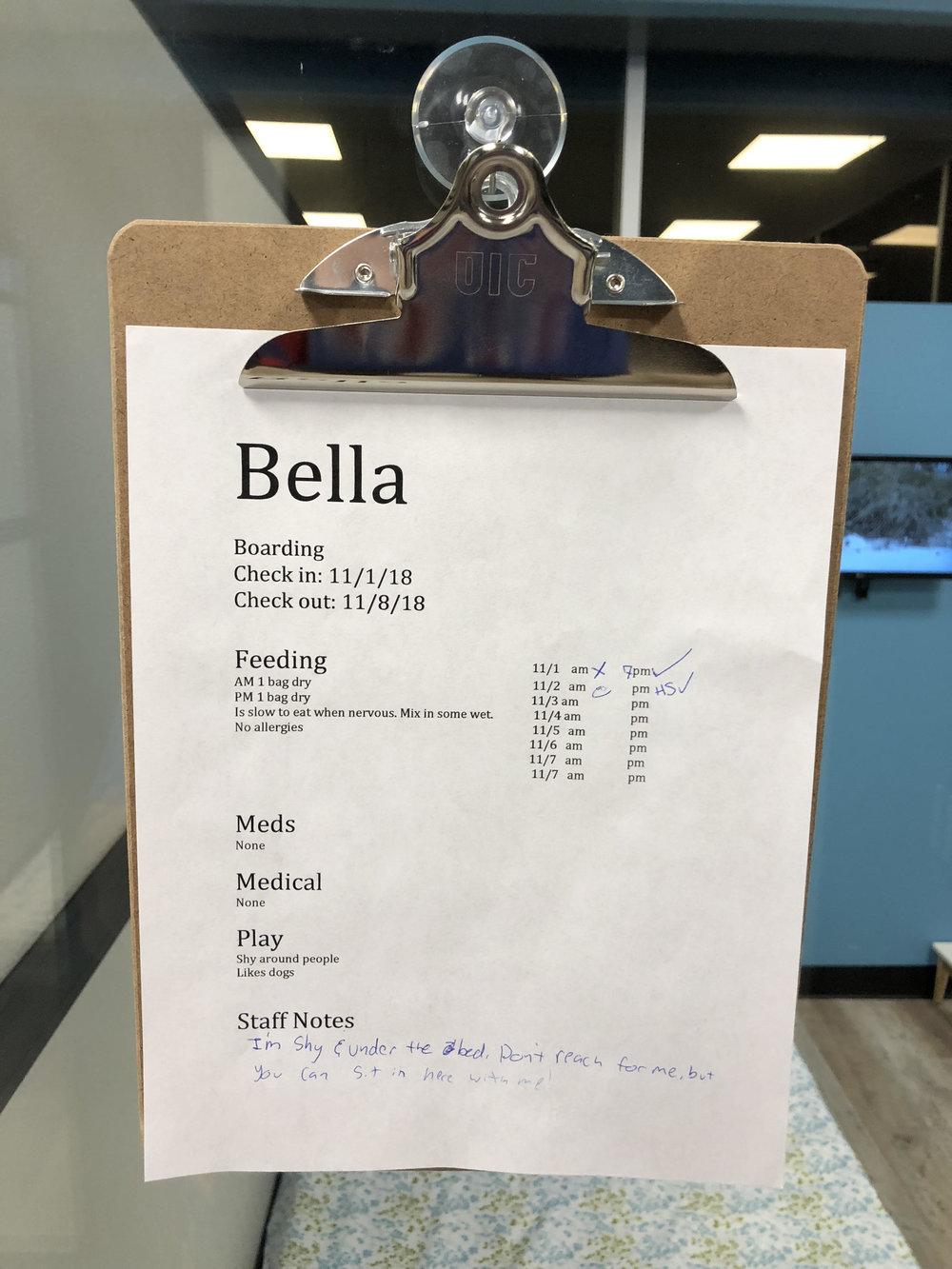 Bella Info.jpg