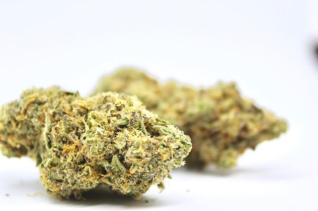 Guess what strain this is? We've got a new batch of some really good premium indoor flowers. HIGHLY recommend you try the new flavs :) *Marijuana is for adults 21 and older. Keep out of reach of children. Do not operate heavy machinery under the influence of marijuana*. . . #oregoncannabis #cannabusiness #southernoregon #kush #marijuana #cannabisculture #medfordoregoncannabis #medfordcannabis #420 #pot #710 #dabs #oil #flower #herb #smoke #leafly #weedmaps #concentrates