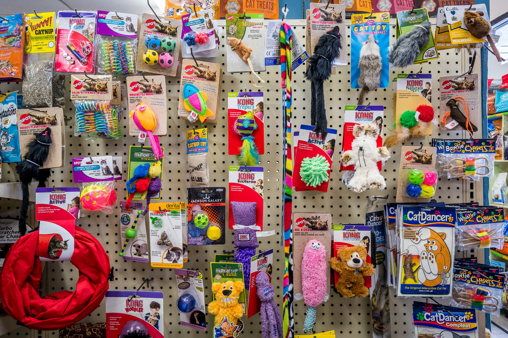 toys-animal-crackers-pet-store-los-angeles