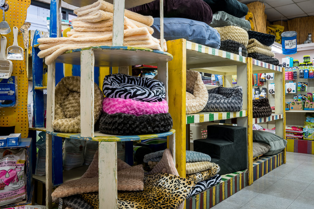 dog-beds-animal-crackers-pet-store-los-angeles