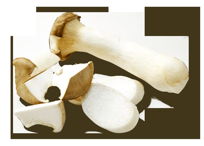 king-oyster-mushroom-01.png