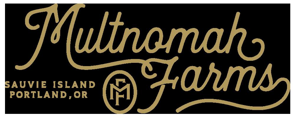 mf_script_logo_01.png