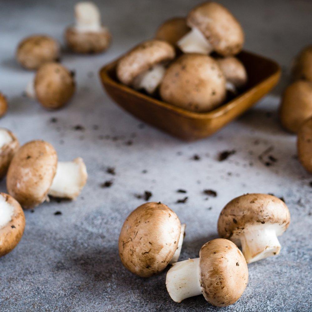 mushrooms-class.jpg