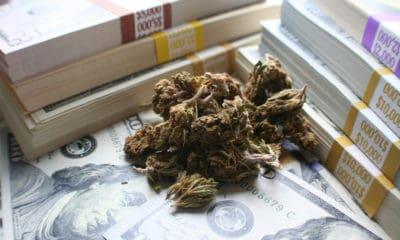 massachusetts-begins-cannabis-retail-licensing-process-hero-400x240.jpg