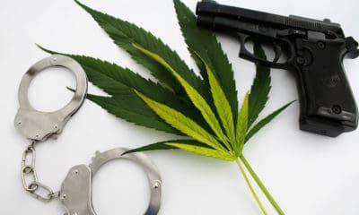 30-arrested-washington-dc-marijuana-pop-up-event-hero-400x240.jpg
