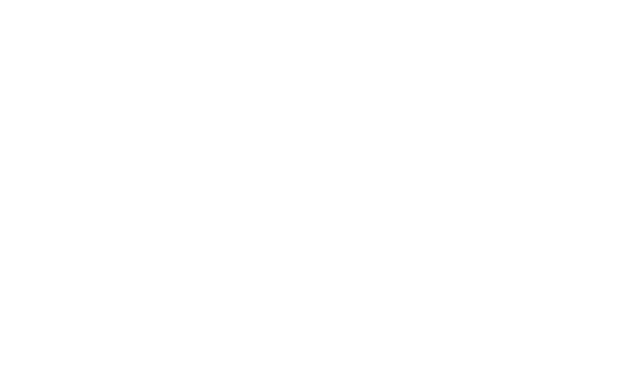 TS_TorrensTransit_Logo_Standard_White3x.png