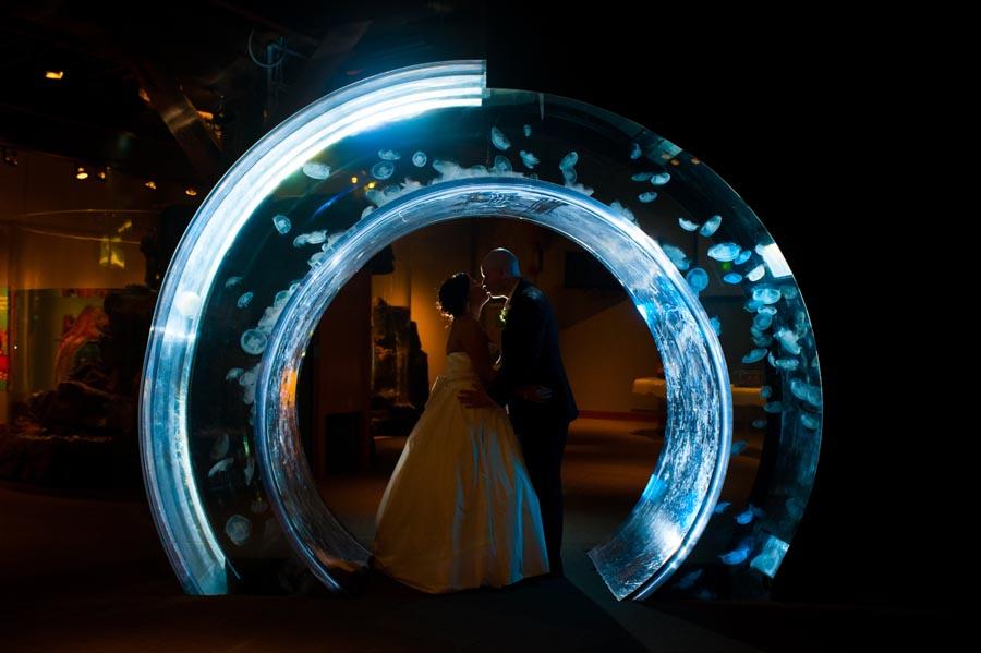 Seattle Aquarium Event Planner (8).jpg