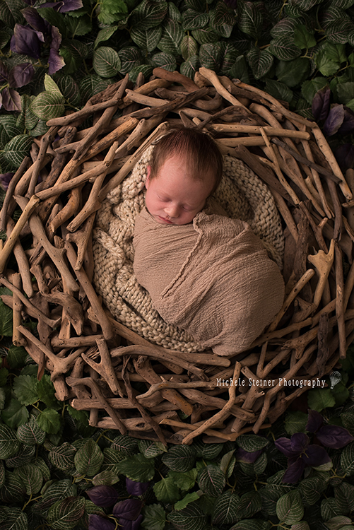 a newborn lies wrapped in a brown layer inside a twig nest with greenery surrounding her in background