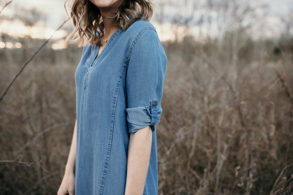AugustClothSpring jean dress.jpg
