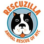 Rescuzilla Animal Rescue of NYC