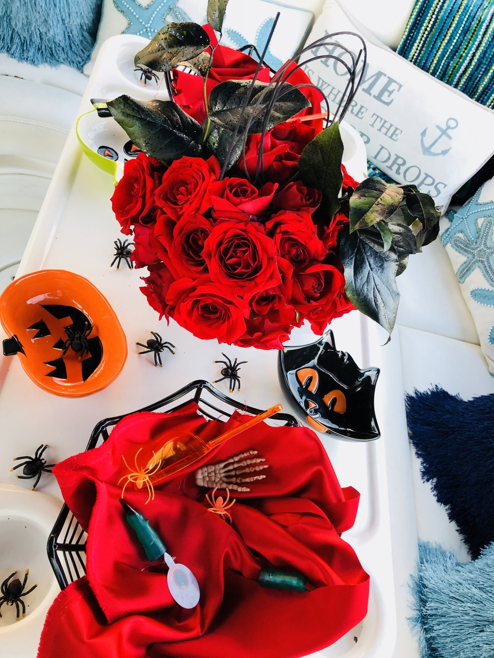 Savvy_Sexy_socia_womens_Networking_club_Keula_Binelly_Boating_life_washington-dc_Halloween_Georgetown_waterfront