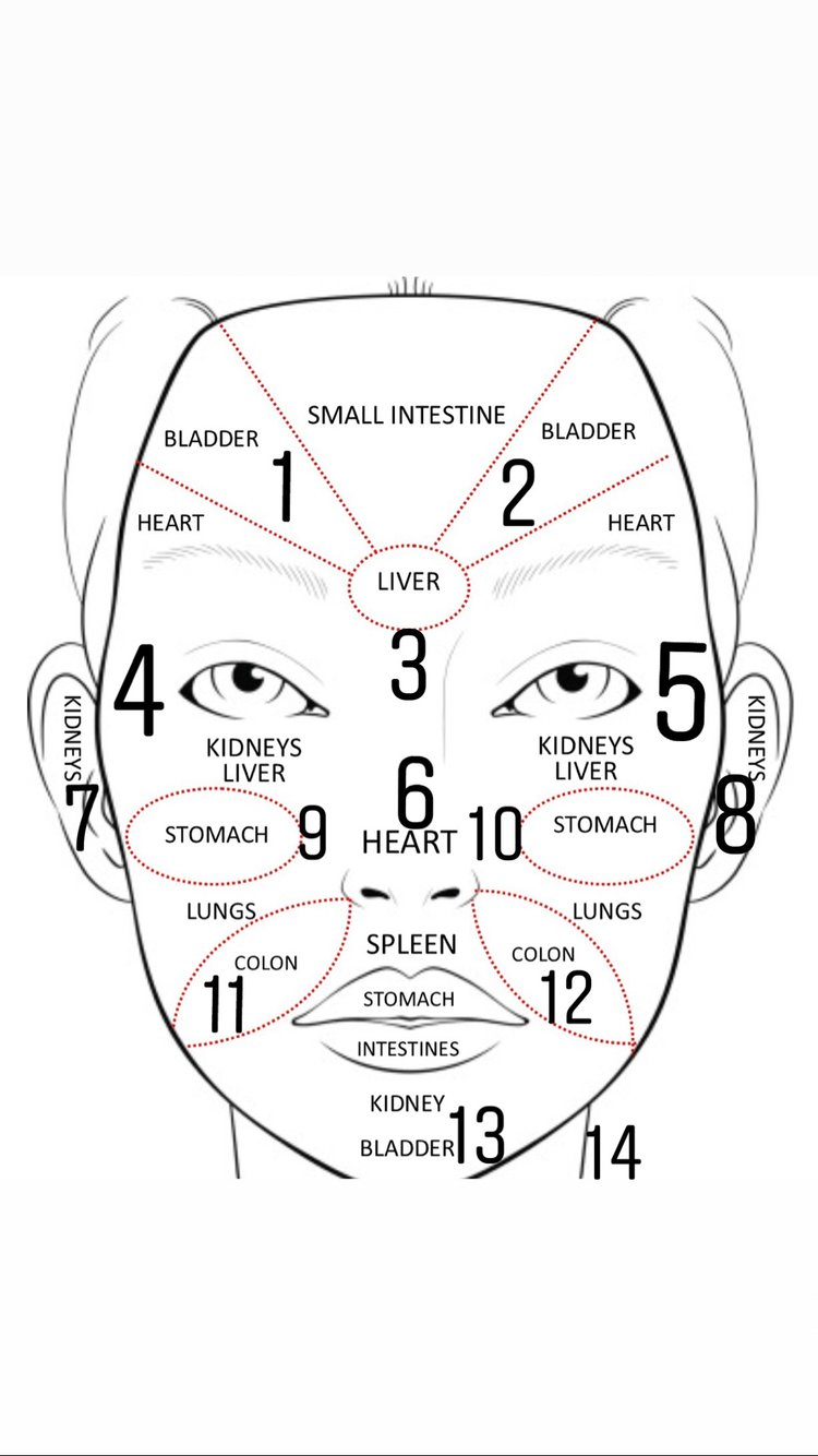 CHINESE FACE MAPPING WHAT YOUR ORGANS MAY BE TELLING YOU ABOUT - Chinese face map for acne