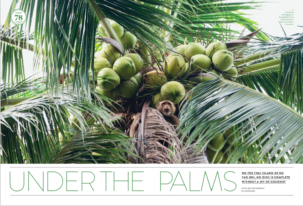 "Text and photos: ""Under the Palms"",  Saveur ."