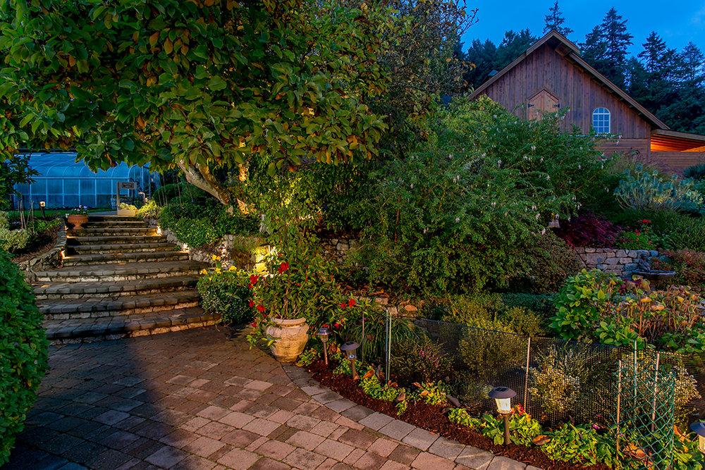 Garden at Dusk.jpg