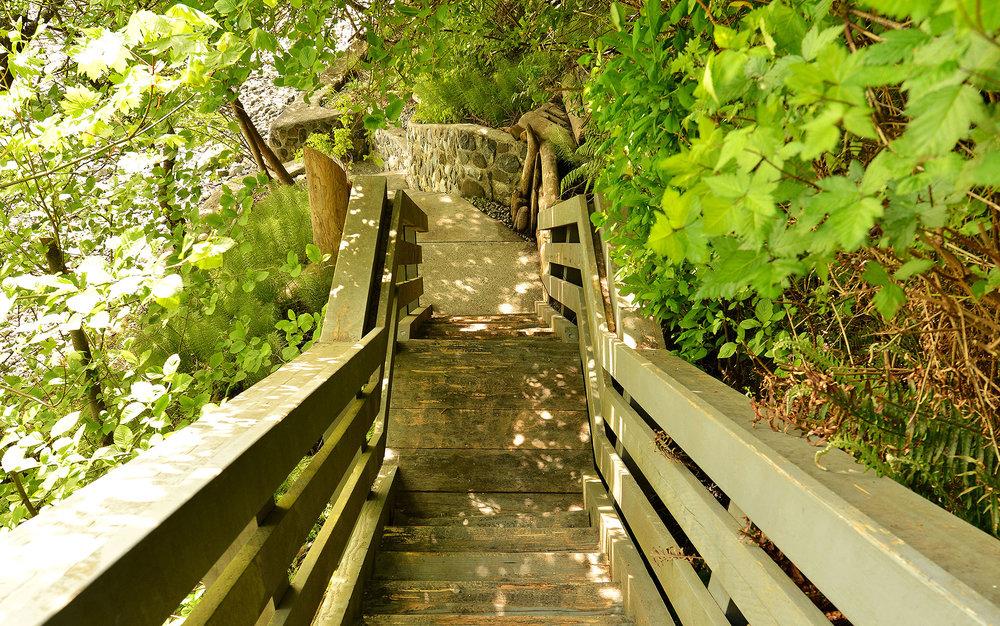 Stairs Vignette.jpg