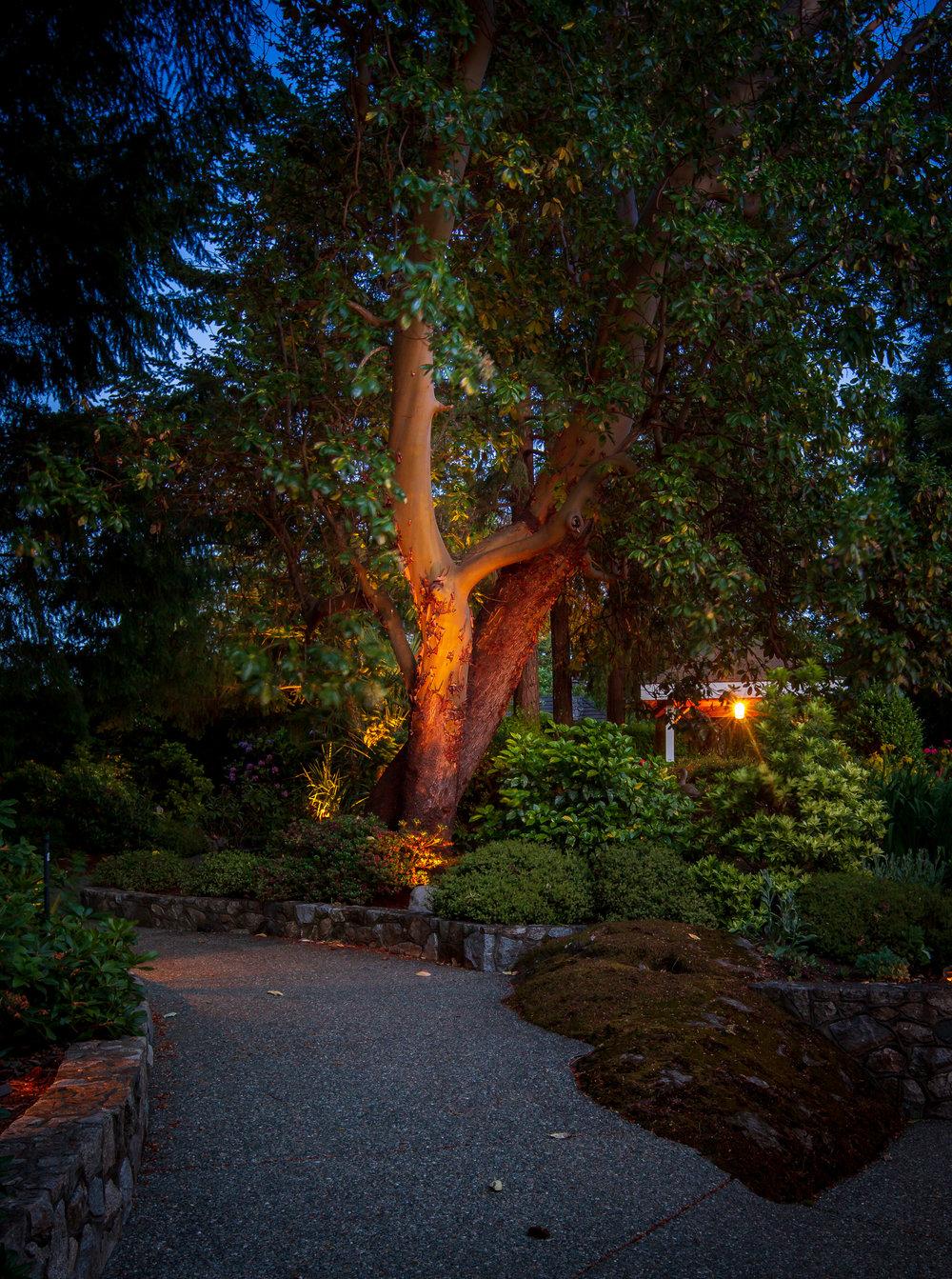 1259 Garden Gate-56.jpg