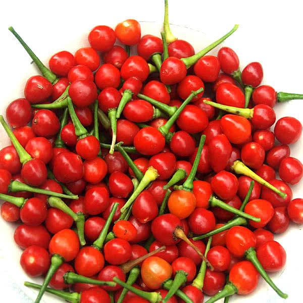 Wiri Wiri Peppers