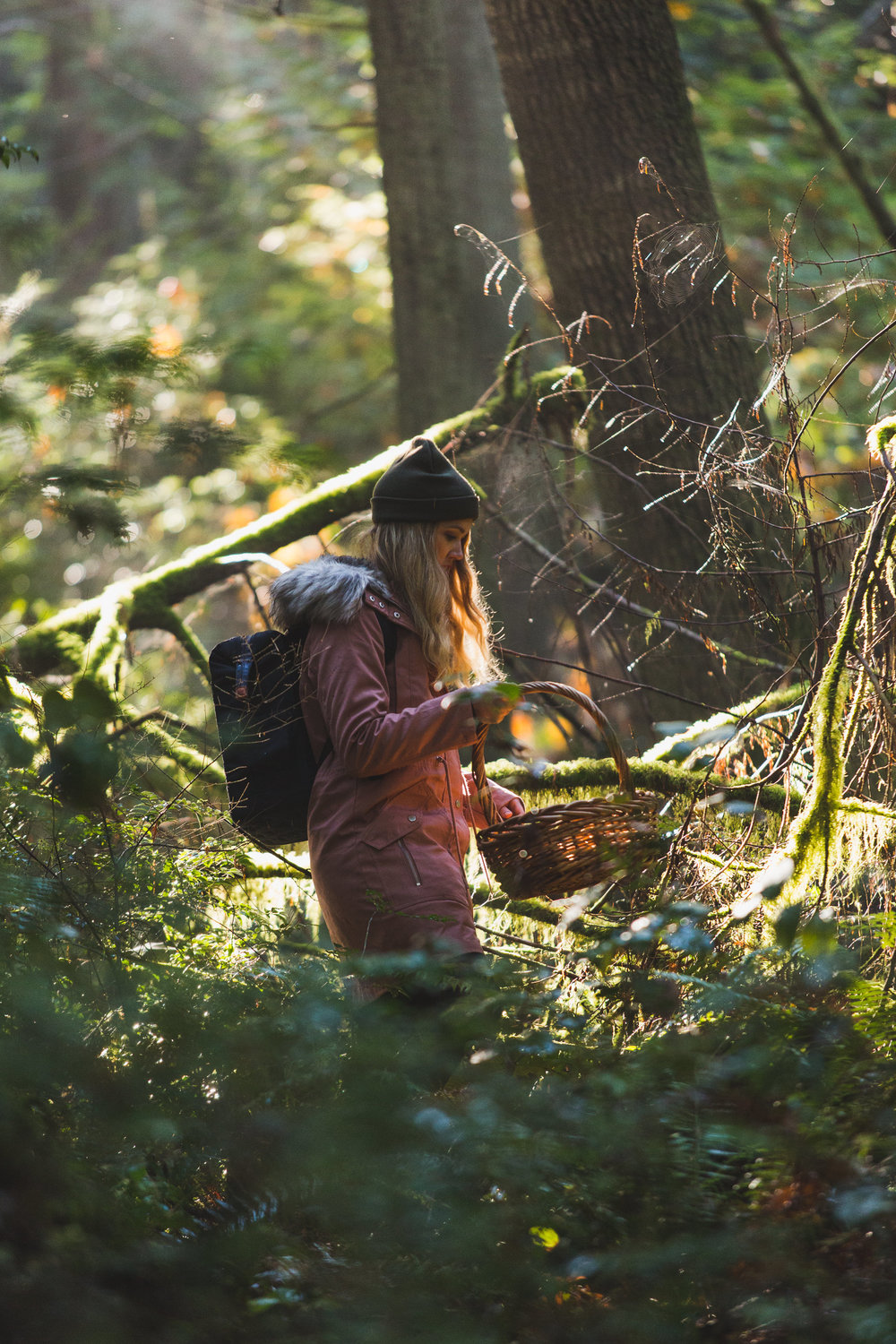 Ashley Rodriguez foraging for Chanterelle