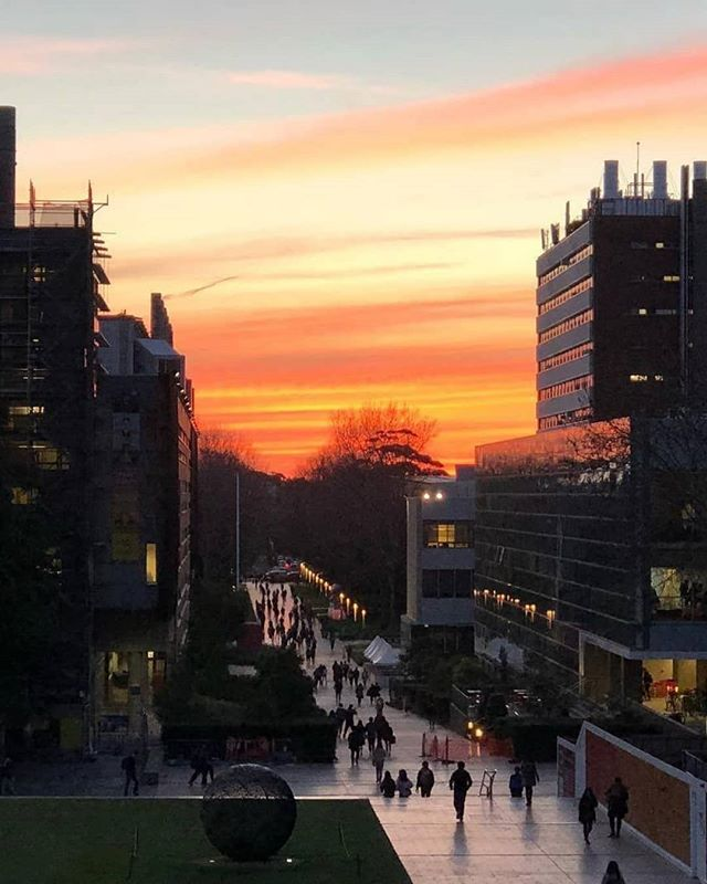 Which suburb in Sydney's East is one of the best for growth and livability? Find out why I think both future homeowners and investors will LOVE Kensington. 😍 Click the link in my bio to read my latest blog post. Image via @UNSW