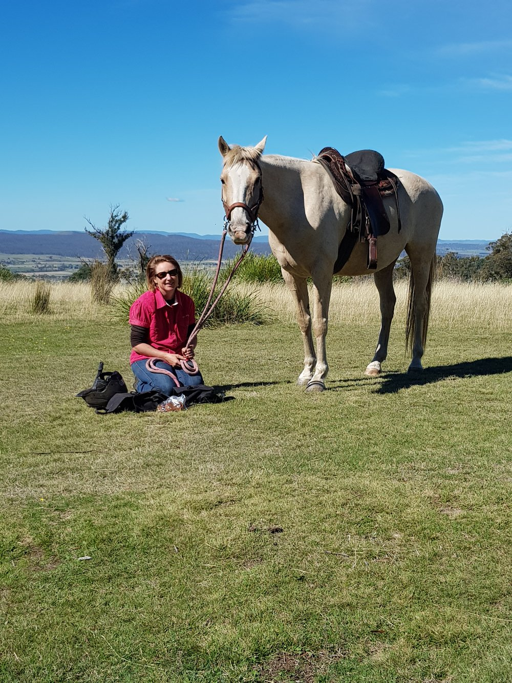Stepping Stone Equine Hoof Care -