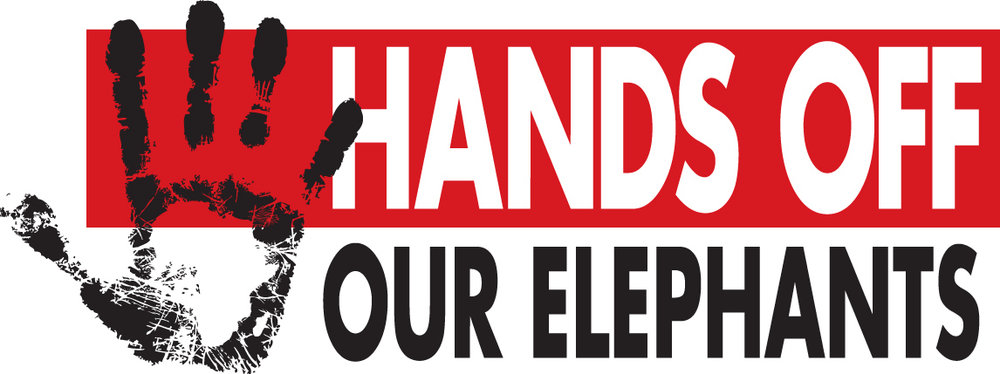The logo from Wildlife Direct's successful Hands Off Our Elephants campaign. The campaign was created to reduce elephant poaching and stop the ivory trade in Kenya.
