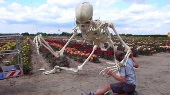skeleton_07.jpg